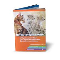 Печать многостраничной брошюры
